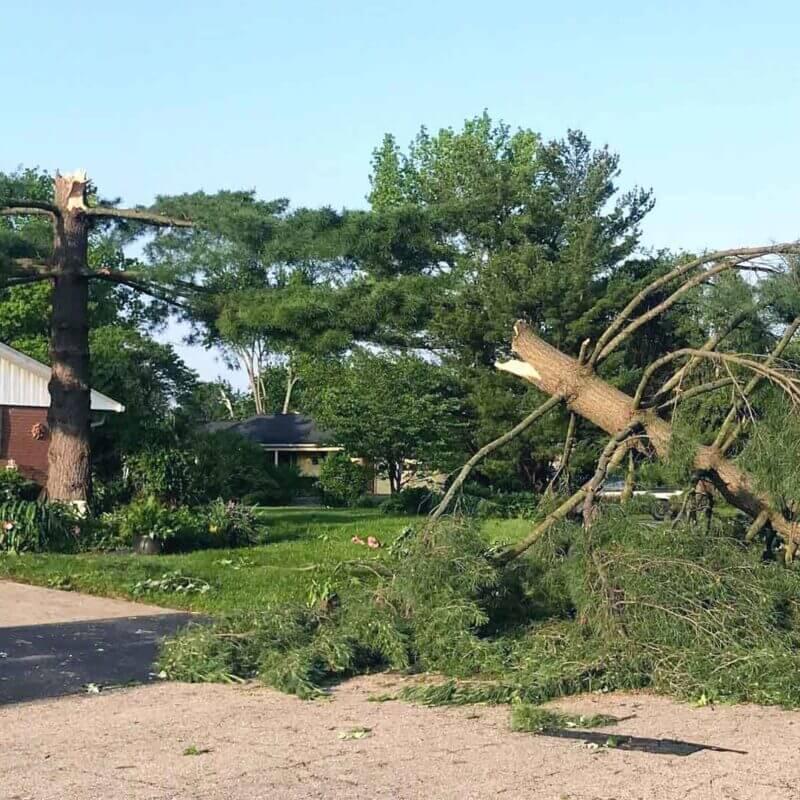 Assisting local storm victims