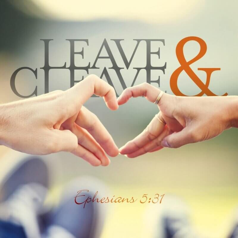 Leave & Cleave